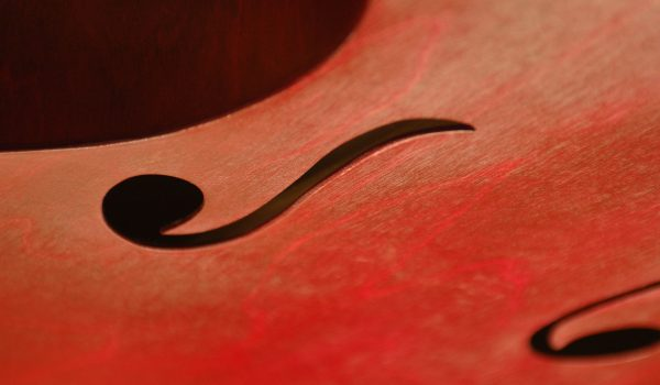 up close photo of violin