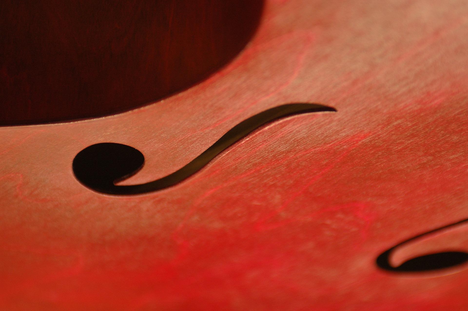 up close photo of violin