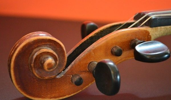 up close photo of head of violin